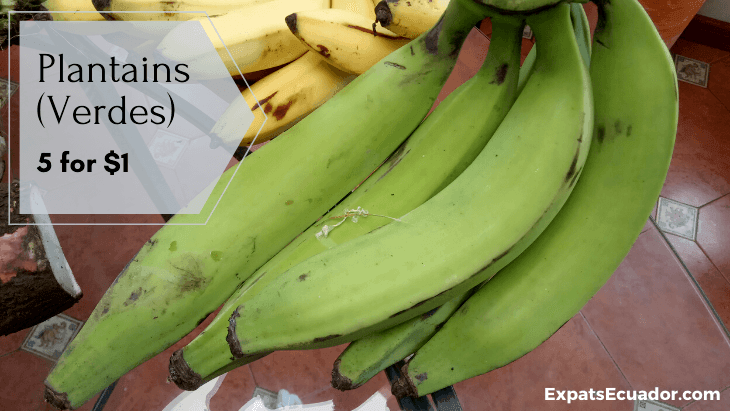 Plantains (Verdes) Bolon Cuenca