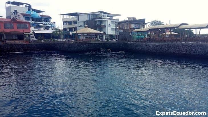 Galakiwi Office Oceanfront San Cristobal, Galapagos Islands
