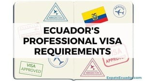 Ecuador's Professional Visa Requirements