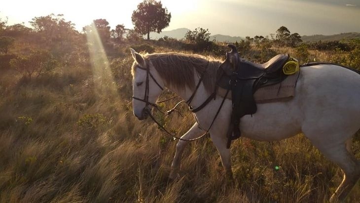 Cuenca Horse Riding Terra Diversa (Monta Runa)